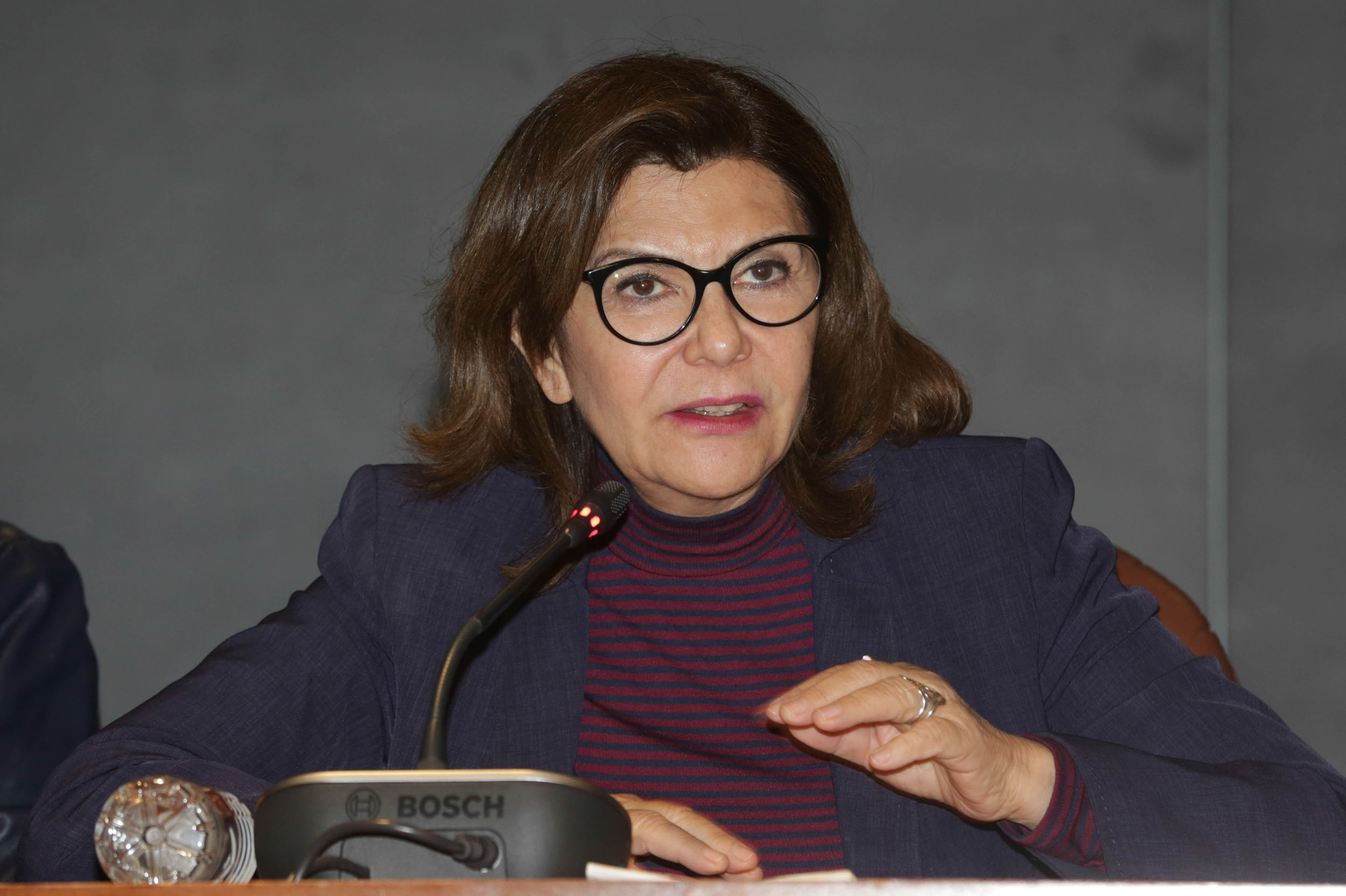 Ana Guezmes 5