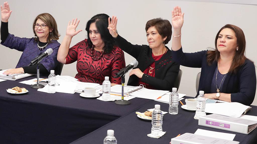 """El Senado entregó el reconocimiento """"Elvia Carrillo Puerto"""""""