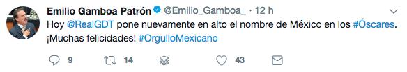 Guillermo del Toro 17