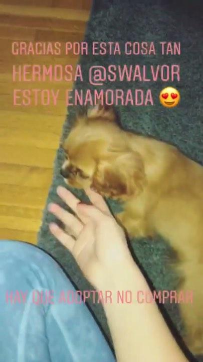 La perra de Sofia Castro 5