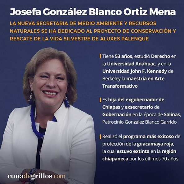gabinete de Andres Manuel 7