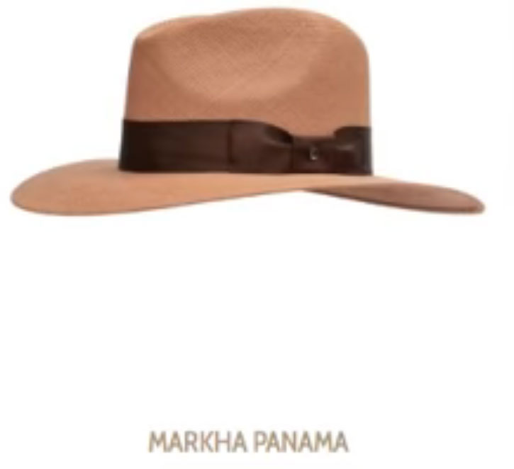 sombrero de Andres Manuel 7