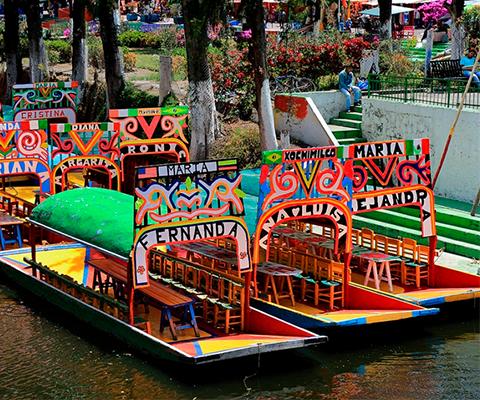 5 cosas para hacer en Xochimilco para reactivar su economía