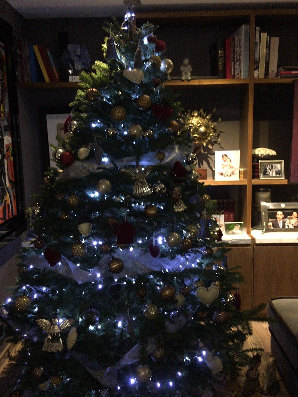 Los árboles de Navidad de los politicos