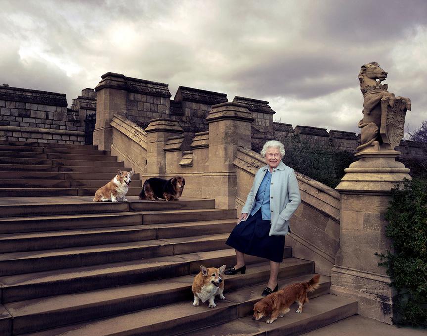 Perros reina Isabel 1