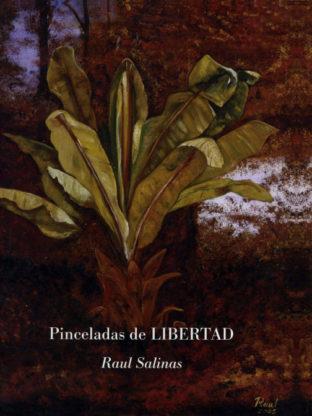 libros escritos por Raúl Salinas