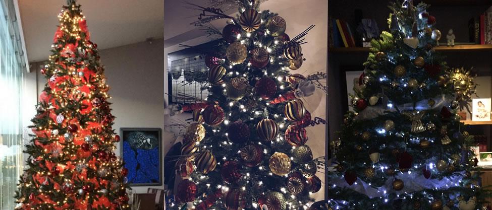 Los árboles de Navidad de los políticos [FOTOS]